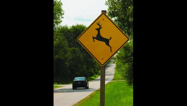 Deer create hazards for Missouri motorists.